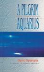 A Pilgrim in Aquarius - David Spangler