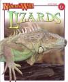 Nature's Wild: Lizards (Volume 6) - Robert Matero