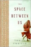 The Space Between Us - Thrity Umrigar