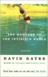 The Wonders of the Invisible World - David Gates