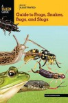 Basic Illustrated Guide to Frogs, Snakes, Bugs, and Slugs - John Himmelman