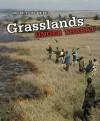 Grasslands Under Threat - Paul Mason