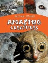 Awesome Animals: Amazing Creatures - Teacher Created Materials, Lynn Huggins-Cooper