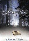 Picture Perfect - Elaine Marie Alphin