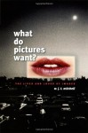 What Do Pictures Want?: The Lives and Loves of Images - W.J.T. Mitchell