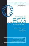 Making Sense of the ECG: A Hands-On Guide - Andrew Houghton, David Gray