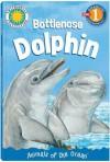 Bottlenose Dolphin - Palm Kids, Kathleen Weidner Zoehfeld