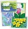 Northern Flowers Notecards - Rick Allen