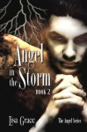 Angel in the Storm - Lisa Grace, Dusty Catlett
