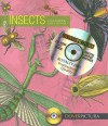 Insects - Alan Weller