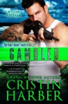 Gambled: A Titan Novella - Cristin Harber
