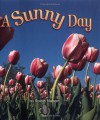 A Sunny Day - Robin Nelson