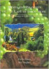 Wines and Brandies of the Cape of Good Hope: The Definitive Guide to the South African Wine Industry - Phyllis Hands, Dave Hughes