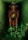 Pitch Green (Dimensions in Death) - Berk Washburn, Andy Washburn