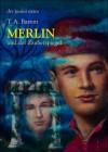 Merlin und der Zauberspiegel (Merlin-Saga, #4) - T.A. Barron