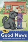 Comprehension Power Readers the Good News Grade Four 2004c - Pearson School