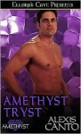 Amethyst Tryst - Alexis Canto