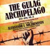The Gulag Archipelago, 1918-1956, Volume 2: An Experiment in Literary Investigation, III-IV - Aleksandr Solzhenitsyn, Thomas P. Whitney, Frederick Davidson