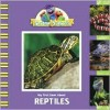 My First Book about Reptiles - Kama Einhorn