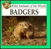 Badgers - Lynn M. Stone, Rourke Press