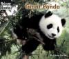 Giant Panda - Edana Eckart