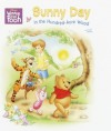 Sunny Day in the Hundred-Acre Wood (Super Tab Books) - Walt Disney Company, Jennifer Weinberg