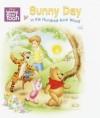 Sunny Day in the Hundred-Acre Wood (Super Tab Books) - Walt Disney Company, Jennifer Weinberg