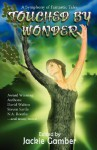 Touched by Wonder - Jackie Gamber, Ian Rogers, Lisa A. Koosis