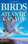 Birds of Atlantic Canada - Roger Burrows, Gary Ross, Ted Nordhagen