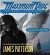 The Angel Experiment - James Patterson, Evan Rachel Wood