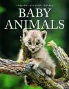 Baby Animals (Snapshot Picture Library) - Karen Penzes