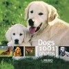 Dogs [1001 photos] - David Boyle