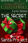 The Secret Santa Project - Lyric James