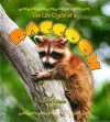 Life Cycle of a Raccoon - John Crossingham