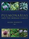 Pulmonarias And The Borage Family - Masha Bennett