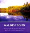 Walden Pond - Bonnie McGrath