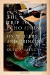 The Trip to Echo Spring: On Writers and Drinking by Laing, Olivia (2013) Hardcover - Olivia Laing