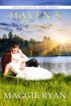 Haven's Promise (Divine Designs, #3) - Maggie Ryan