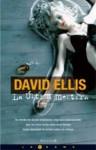 La Ultima Mentira - David B. Ellis