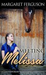 Meeting Melissa: A Contemporary Romance Fiction Novel - Margaret Ferguson