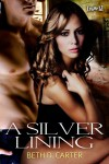 A Silver Lining - Beth D. Carter