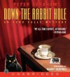 Down the Rabbit Hole (Audio) - Peter Abrahams, Mandy Siegfried