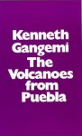 Volcanoes from Puebla - Kenneth Gangemi