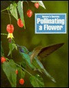 Pollinating a Flower - Paul Bennett