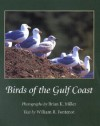 Birds of the Gulf Coast - Brian K. Miller, Brian K. Miller
