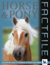 Horse and Pony Factfile - Sandy Ransford, Kingfisher