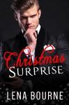 Christmas Surprise (His Forever Serial PREQUEL) (Christmas Romance) - Lena Bourne