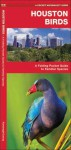 Houston Birds: A Folding Pocket Guide to Familiar Species of the Upper Texas Coast - James Kavanagh, Raymond Leung