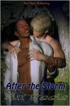 After the Storm - Jaxx Steele