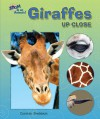 Giraffes Up Close (Zoom in on Animals!) - Carmen Bredeson